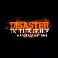 disaster-in-the-gulf